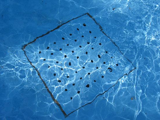 ralos piscinas